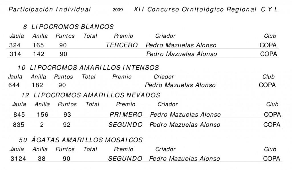Resultados individuales 2009 regional Castilla y Leon