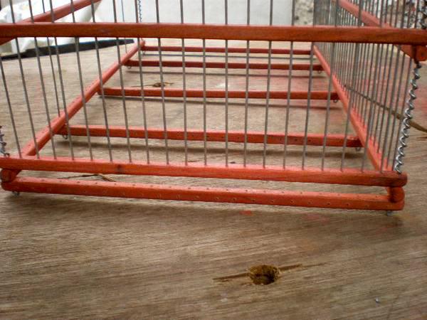En esta parte, al colocar los alambres dejaremos el espacio, anteriormente comentado, para la laminilla o carton.
