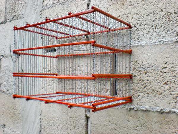 Aqui esta la jaula ya barnizada y con todos los alambres a excepcion de un espacio, que servira para colocar la puerta.