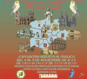 Cartel-Concurso-2013