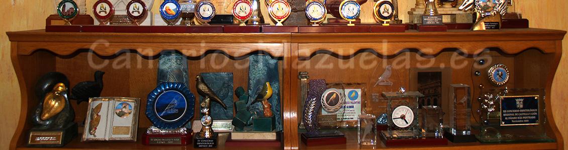 premios. trofeos 2 de canarios
