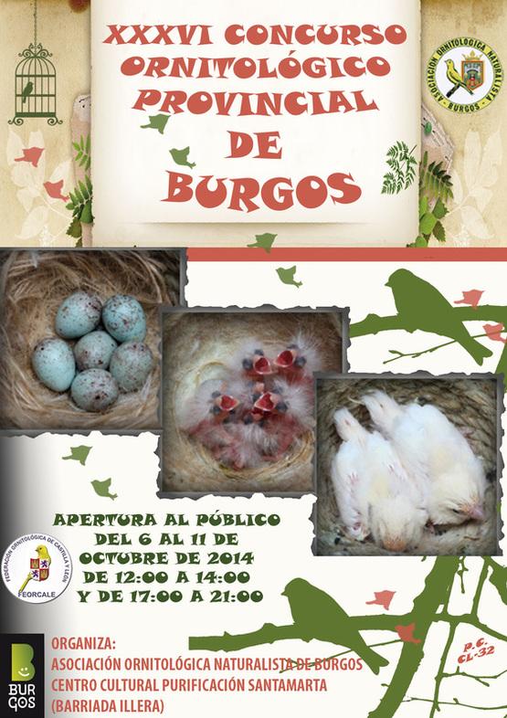 XXXVI CONCURSO ORNITOLÓGICO  PROVINCIAL DE BURGOS